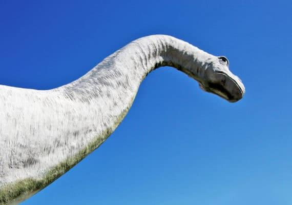 dinosaur neck