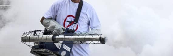 mosquito control in Rio de Janeiro