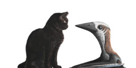 pterosaur and cat