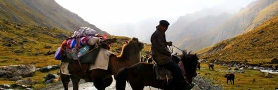 man, horse, camel, Tian Shan