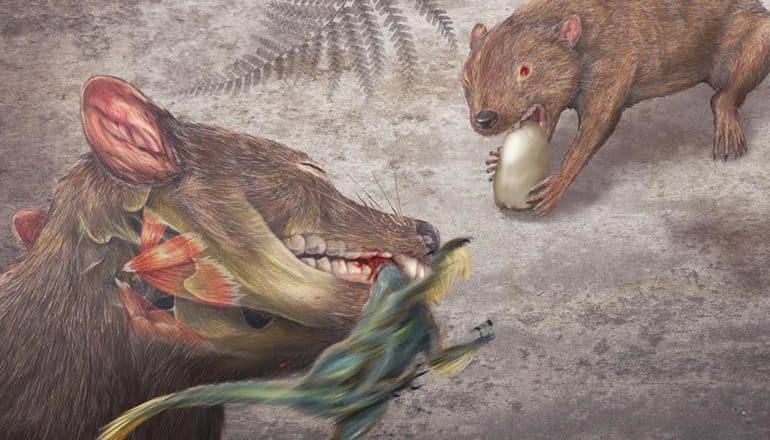Didelphodon illustration