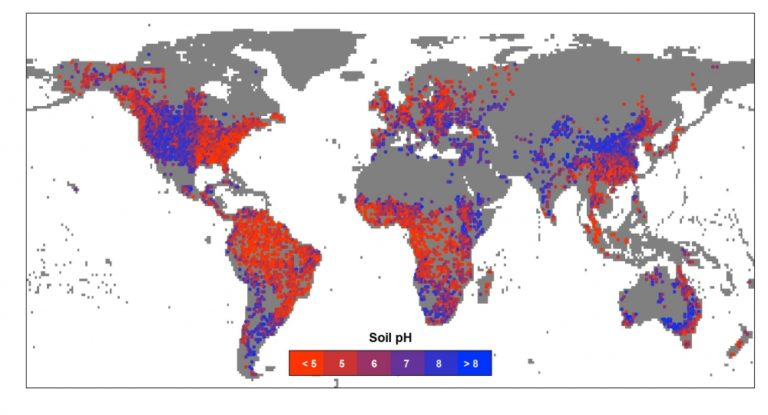 digital mapping of soil ph in Digital soil mapping can be used to create initial soil survey maps, refine or update existing soil surveys, generate specific soil interpretations, and assess risk (carré et al, 2007) it can facilitate the rapid inventory, re-inventory, and project-based management of lands in a changing environment.