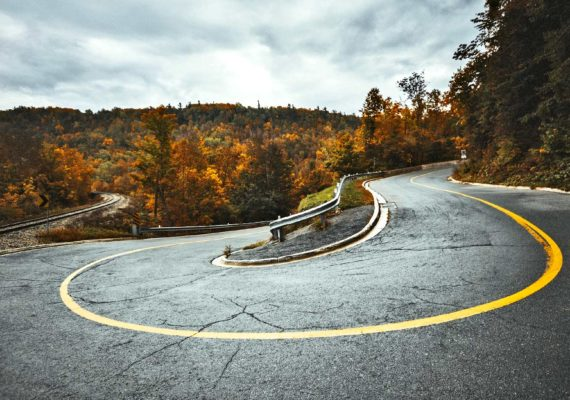 road curves in forest