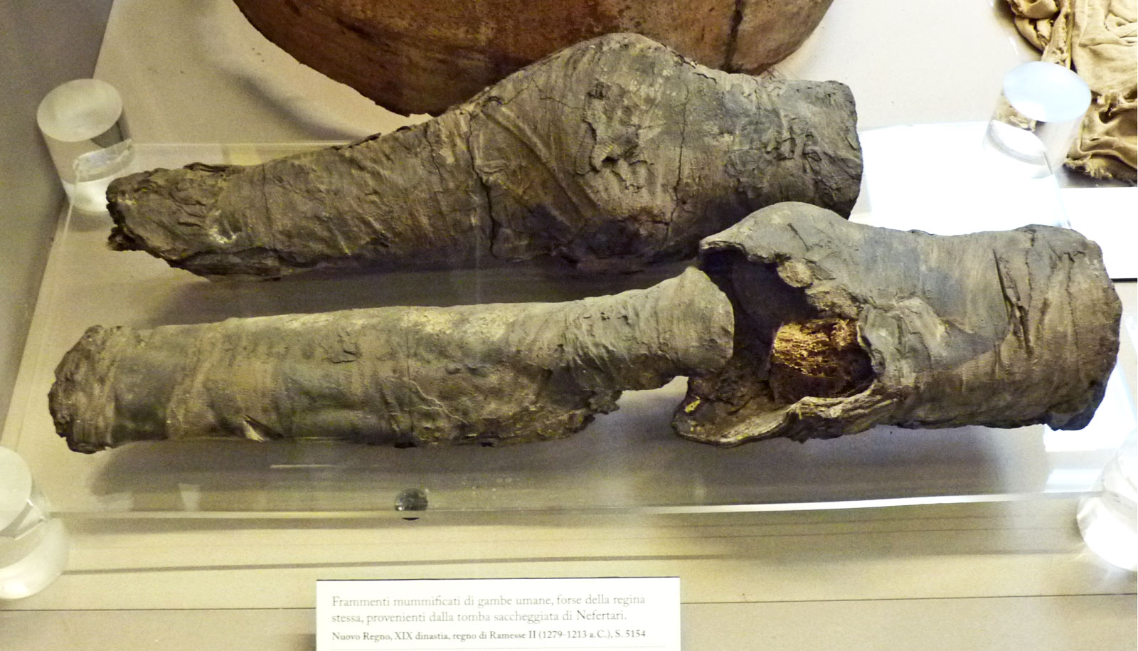 mummy legs of Nefertari