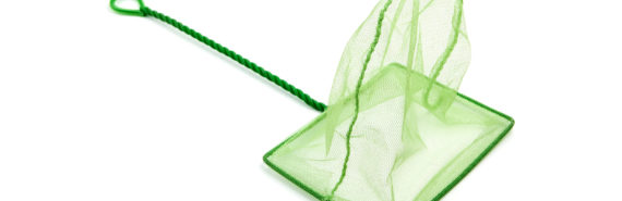 green aquarium net on white
