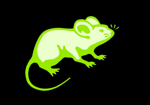 glowing mouse illustration