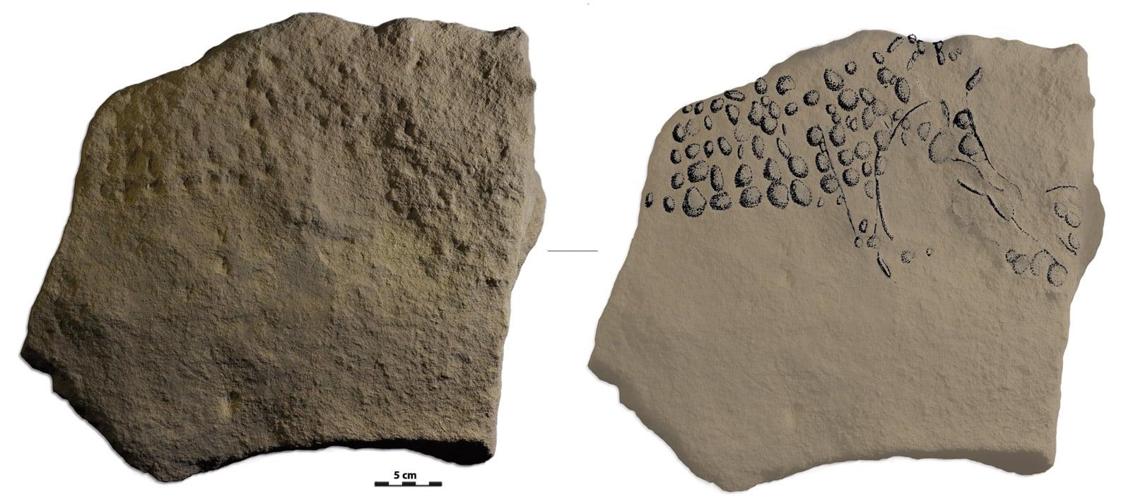pointillist mammoth on limestone