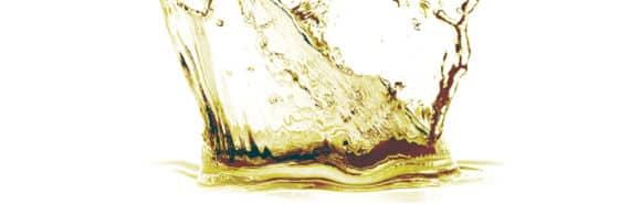 splash of beer
