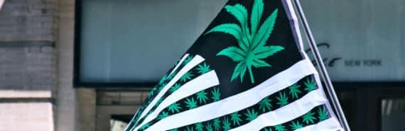 pot leaf american flag