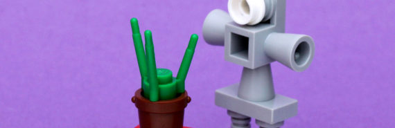 LEGO robot and plant