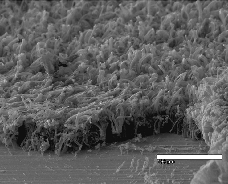 electron microscope image of nanotube coated in lithium metal