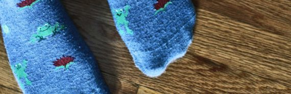 blue frog socks on wood floor