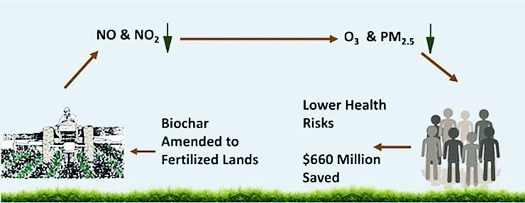 biochar illustration