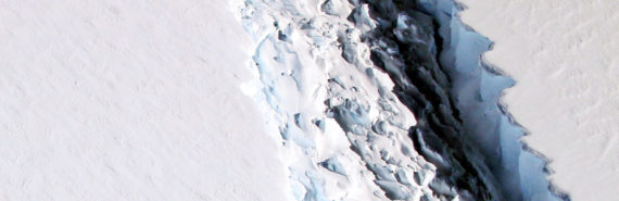 Larsen ice shelf separating