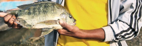 man in yellow shirt holds fish