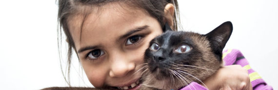 girl holds siamese cat