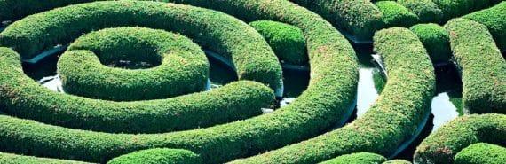 hedge maze labyrinth