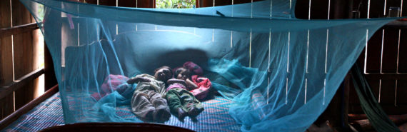 kids under blue mosquito net