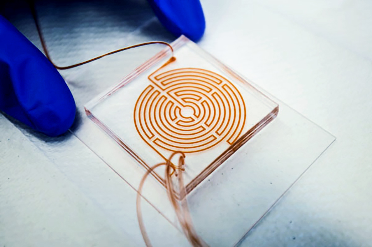 labyrinth chip