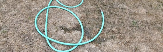 green hose on dead lawn