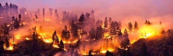 wildfire on mountain