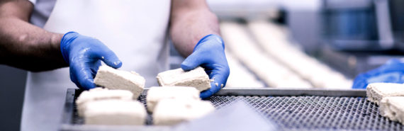 tofu production