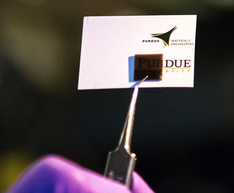 shark sensor against business card