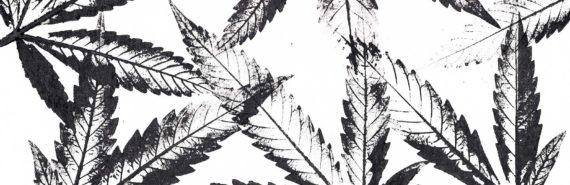 b/w marijuana leaf print