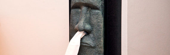 Easter Island head tissue box (influenza concept)