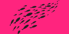 black fish on hot pink background