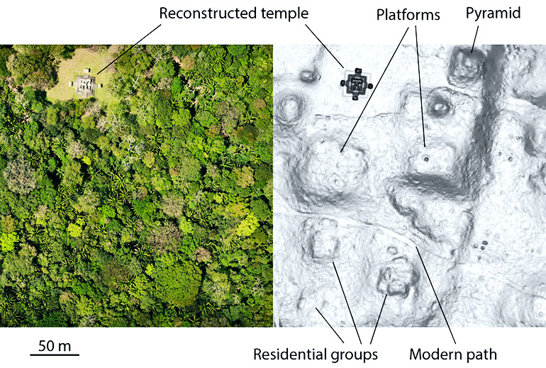 aerial photo and LiDAR comparison