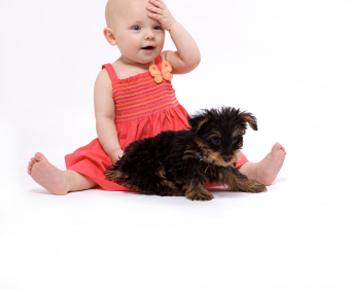 baby_puppy2