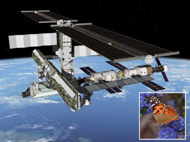 Space Station2