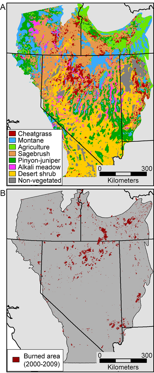 Cheatgrass Sparks Fires In Us Great Basin Futurity - Great-basin-on-us-map