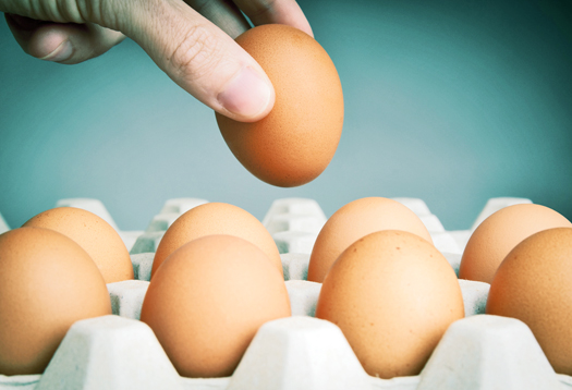 Eat protein at breakfast to snack less at night