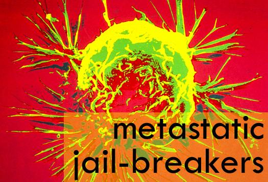 How 'jail-breaker' cancer cells escape