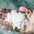 salt_hand_525