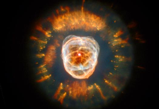 Low sodium 'diet' key to stars' long life