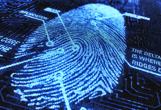 Simple software makes fingerprinting more precise