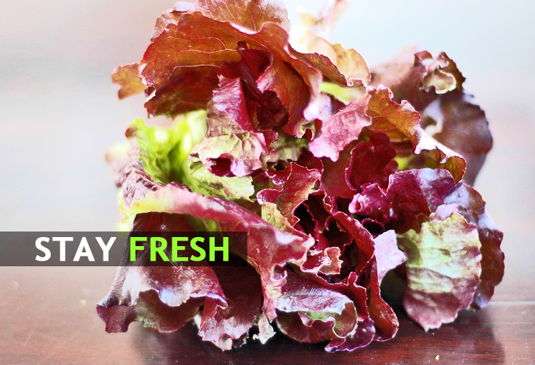 Could this gene make leafy greens last longer?
