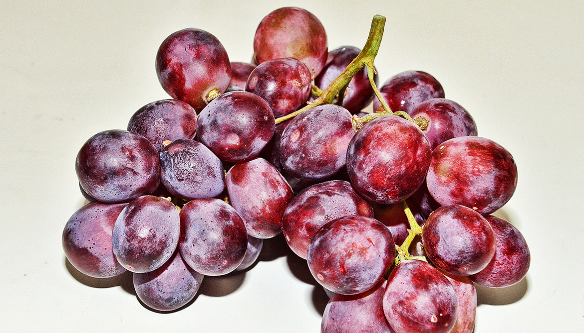 Grape skin extract before radiation kills more cancer