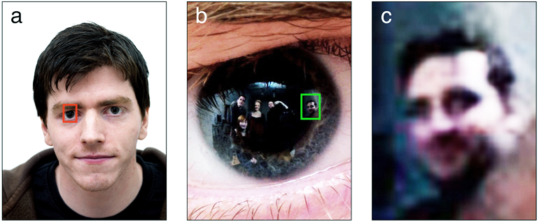 Zooming in on the subject's eye reveals hidden bystanders. (a) High-resolution face photograph. The red frame indicates the region of interest, which includes the reflective surface of the cornea. (b) Zoomed view of the region of interest with contrast enhanced. Five bystanders are clearly visible in the corneal reflection. The green frame highlights the face of one bystander. (c) Enhanced close-up of highlighted bystander. Gender, ethnicity, hair color, and approximate age can be clearly discerned, along with emotional expression and direction of social attention. (Credit: U. York)
