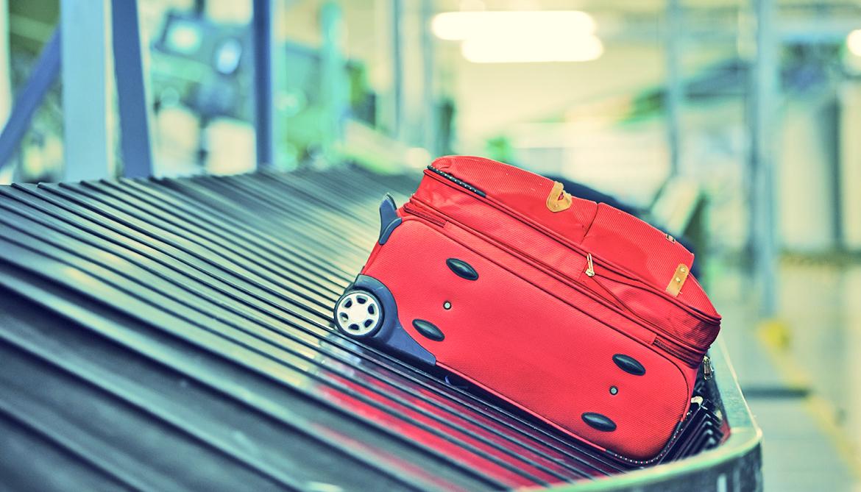 'Tis the season to travel