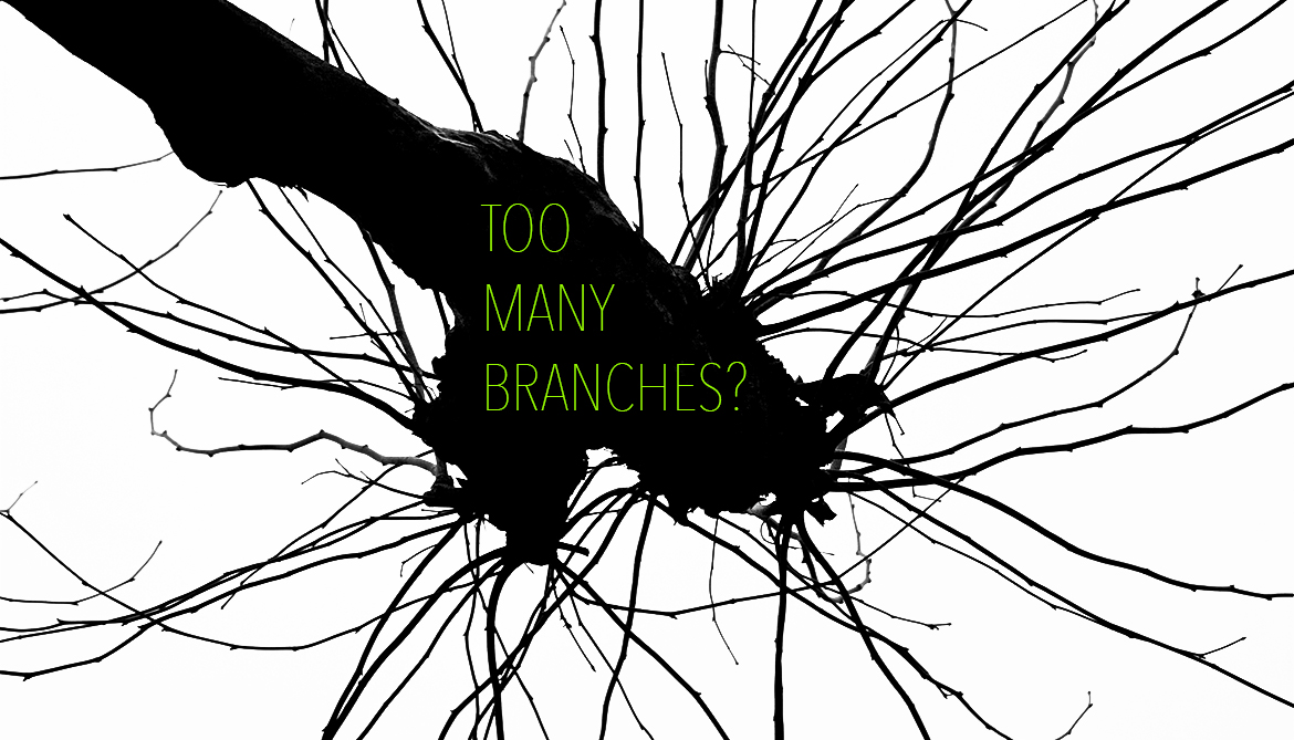 When neurons grow too many (or too few) branches