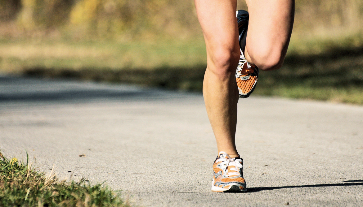 Muscles, not just ligaments, support foot's arch