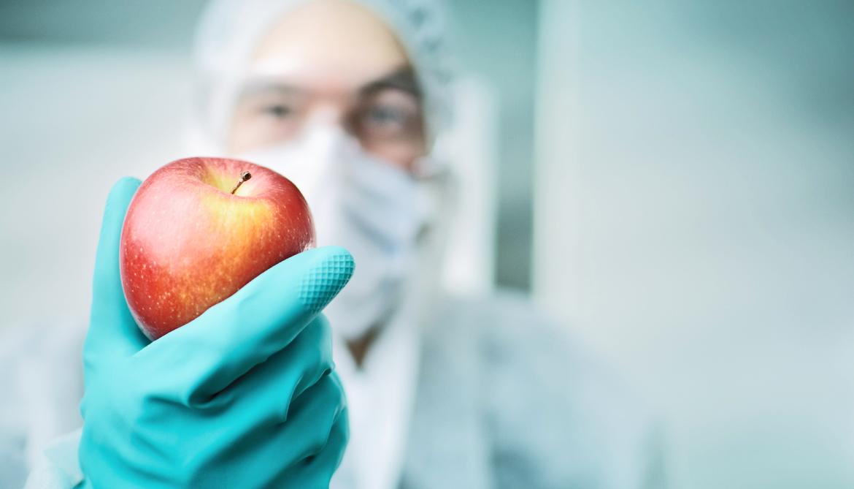 Mandate GMO labels? Scientists say 'no'