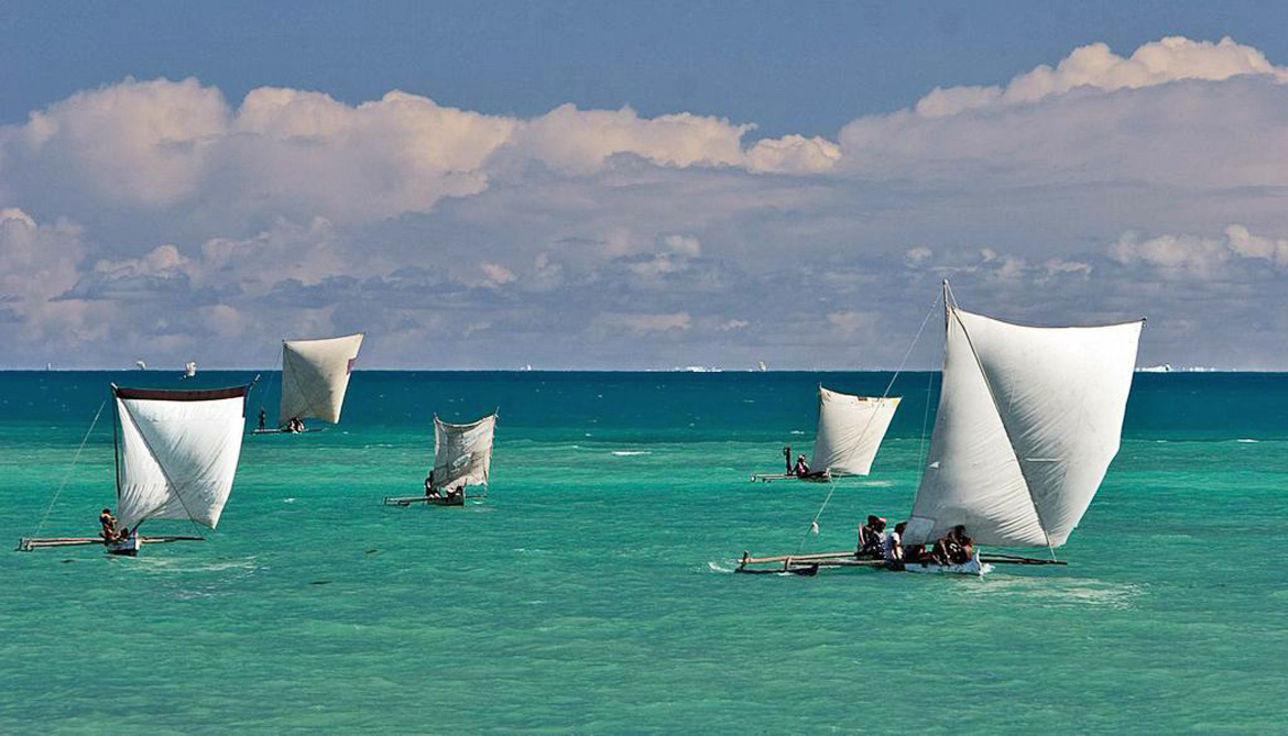Boats called sailing pirogues on the ocean