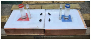 Colored U-tube experimental set up.