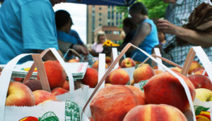 peaches at the farmers market