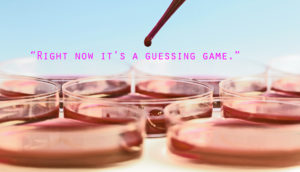 petri dishes and pipette